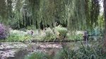 Download Monet Giverny's garden