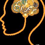 המוח והזיכרון – איך לשמר, לשפר ואפילו להציל אותם