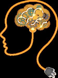 המוח והזיכרון